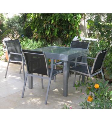 השולחן היוקרתי ומדהים + 4 כסאות של חברת DGARDEN דגם פיניקס