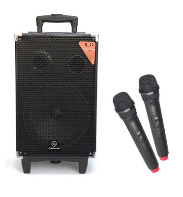 בידורית עוצמתית 160W למוסיקה וקריוקי + 2 מקרופונים אלחוטיים תוצרת PROXIMA דגם q10-mat