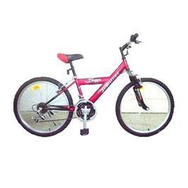 אופני הרים 26 אינצ' עם 21 הילוכים כולל בולמי זעזועים קידמיים מבית CITYSPORT EZ